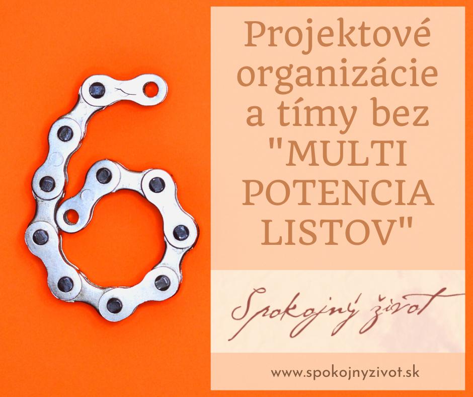 Projektové organizácie a tímy bez MULTIPOTENCIALISTOV